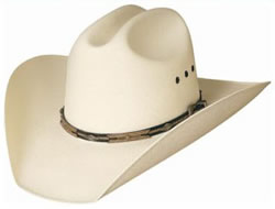 Click Here to View Western Hats and Other Accessories!
