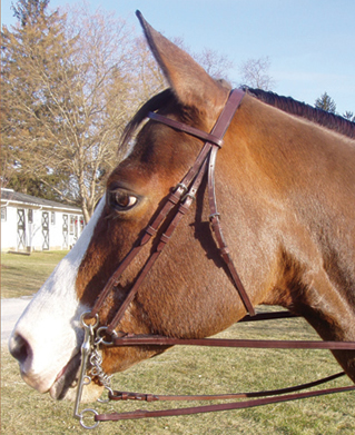 Legacy Weymouth Work Bridle Full Bridle Double Bridle Dressage Bridlle English Bridle with Snaffle & Curb Reins Horse Black