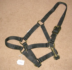 Yearling Halter Nylon Halter with Throat Snap Black