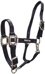 "Unbridled Equine 1"" Deluxe Adjustable Nylon Halter Cob Horse Nylon Halter with Throat Snap Lt Blue Navy Blue Pink"