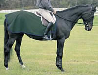 Saratoga Horseworks PolarTec 200 Exercise Rug Polar Fleece Quarter Sheet Horse Green/Navy Blue