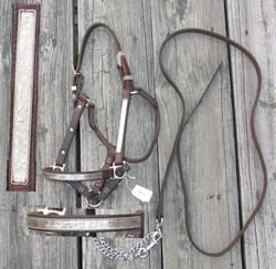 Billy Royal?Western Show Halter Stock Halter with Silver & Lead, Silver Trim Dark Brown Yearling
