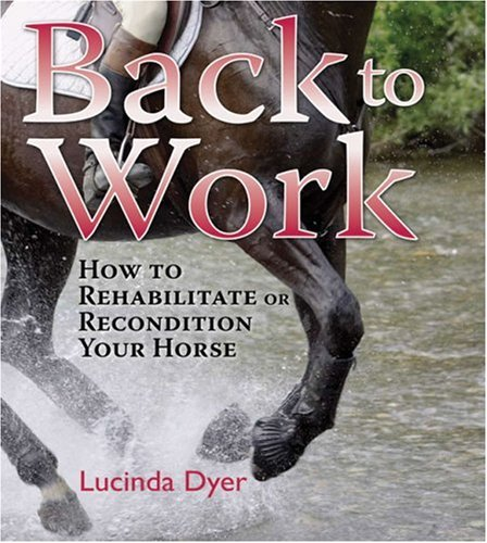 Back To Work How To Rehabilitate or Recondition Your Horse Training Book By Lucinda Dyer