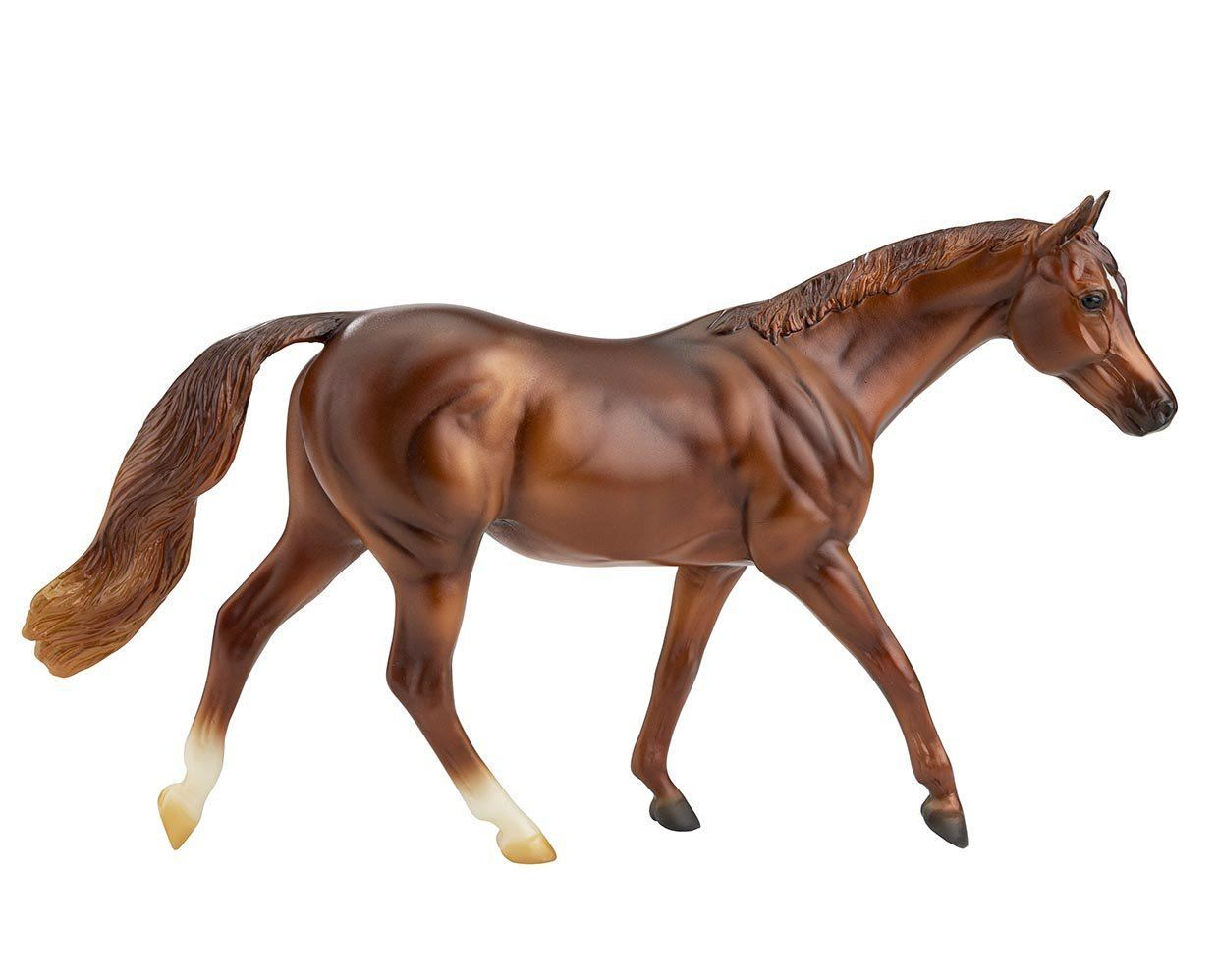 #957 Coppery Chestnut Thoroughbred Classic Freedom Chestnut Warmblood Mare