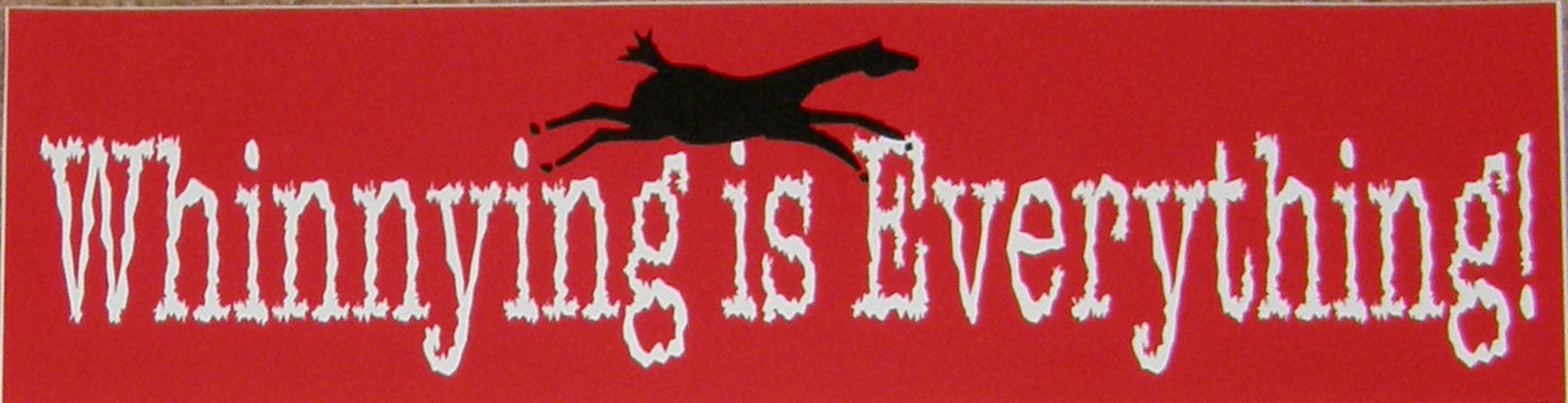 Horse Bumper Sticker Whinnying Is Everything
