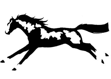 Window Decal Sticker Running Overo Paint Horse Pinto Horse