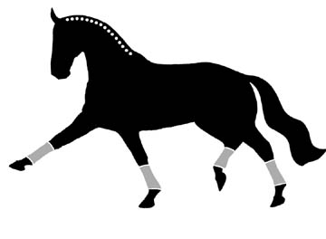 Window Decal Sticker Extended Trot Dressage Horse Spanish Walk