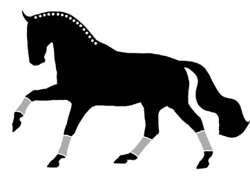 Window Decal Sticker Dressage Horse Cantering