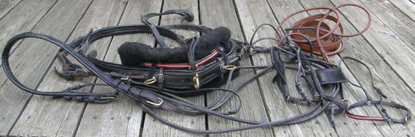 Walsh? Black Patent Leather & Rolled Leather Pleasure Driving Harness Arabian Horse Fine Harness Show Driving Harness & Reins