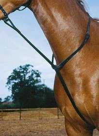 Patterdale English Standing Martingale Flat Standing Martingale
