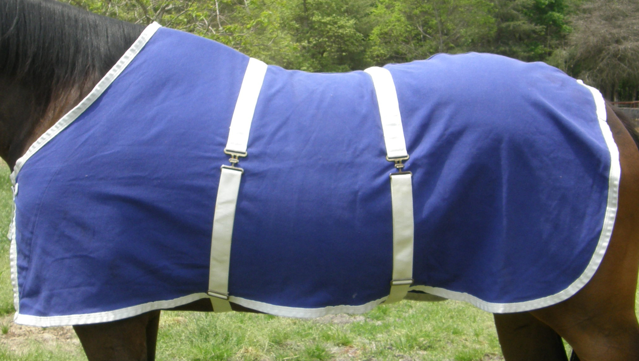 "64"" OF Curvon Cotton Duck Sheet Stable Sheet Pony Small Horse Purplish Blue/White"