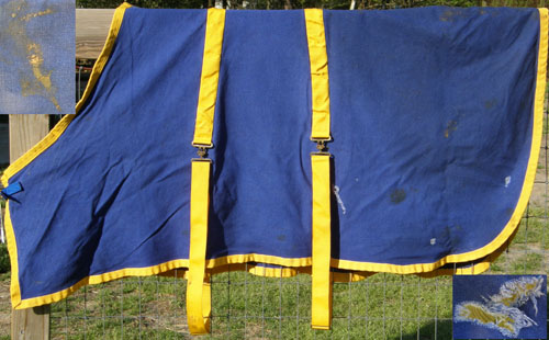 "64"" OF Curvon Heavy Cotton Duck Stable Sheet Pony Small Horse Blue/Gold"