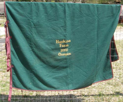 Wool Blend Square Cut Wool Cooler Award Show Cooler Pony Cooler Hunter Green/Burgundy