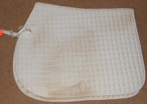 Practical Choice Quilted Cotton Dressage Pad Event Pad English Saddle Pad White