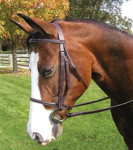 Legacy Premium Plain Round Raised English Bridle Laced Reins Snaffle Bridle Pony Bridle