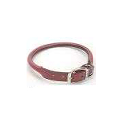 "Coastal Pet Circle T 20"" Rolled Leather Dog Collar"