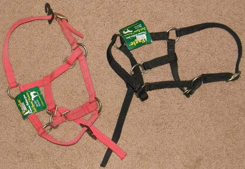 Eagle Miniature Horse Nylon Halter Mini Horse Foal Halter with Catch Strap Red Black