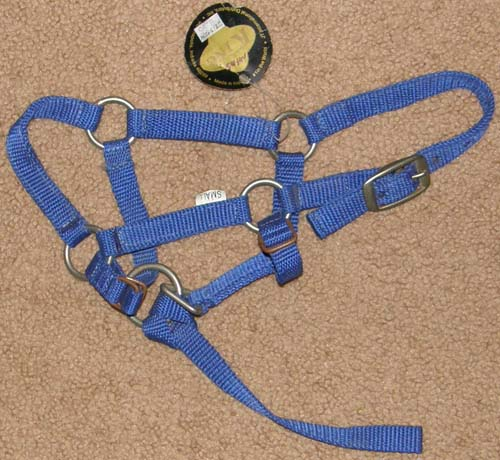 King Miniature Horse Nylon Halter Small Mini Horse Foal Halter with Catch Strap Blue