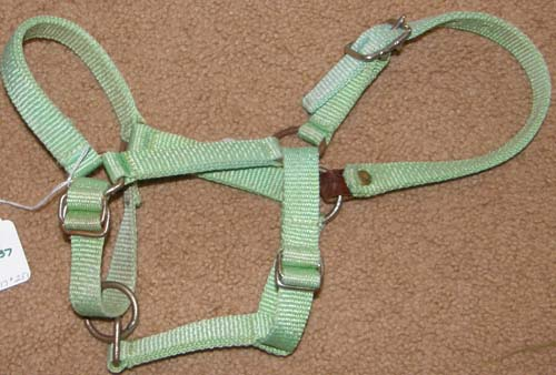 Miniature Horse Nylon Breakaway Halter Mini Horse Safety Halter Foal Halter Lime Green
