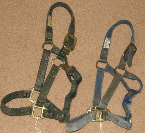 "Johnson Heavy Duty Halter 1"" Nylon Halter Snap Throat Pony/Cob Black Blue"