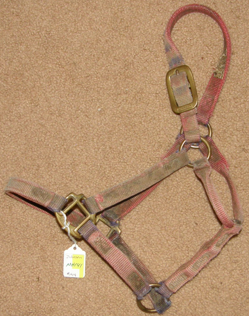 Johnson Heavy Duty Halter Nylon Halter Pony/Cob Faded Red