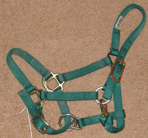 "Weaver 3/4"" Adjustable Chin and Throat Snap Halter Weanling Horse Pony Nylon Halter Hunter Green"