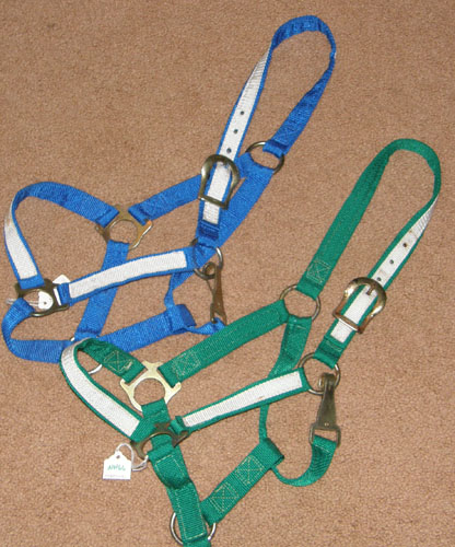 Pony Cob or Yearling Horse Nylon Halter with Throat Snap Blue/White Green/White