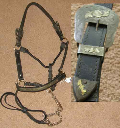 Western Show Halter with Chain Lead Stock Halter Silver Show Halter Silver Trim Black Horse